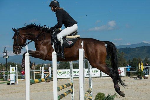 Parkúr, Jumping, Horse, Jockey, Race