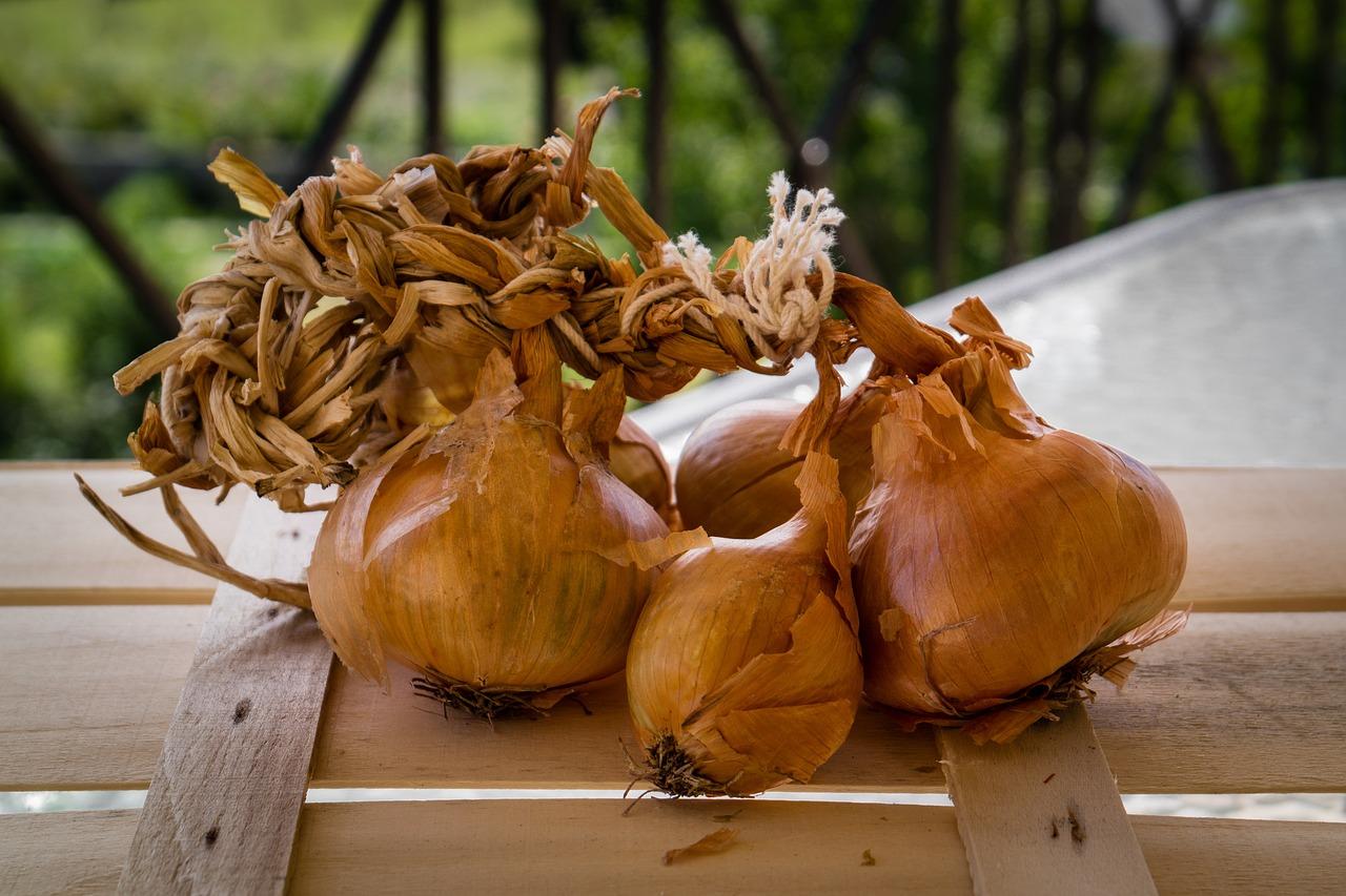 картинки луковицы лука своей части