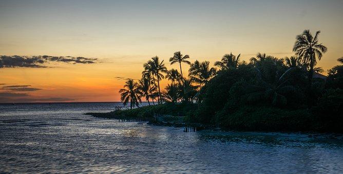 Florida Naples Coastline Water Beach Natur