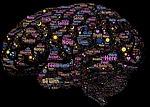 brain, mind, mindfulness