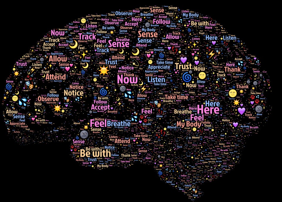 Brain Functions facts-stats