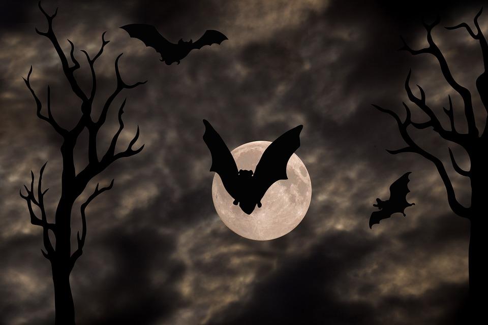 Free Illustration Halloween Gloomy Full Moon Tree