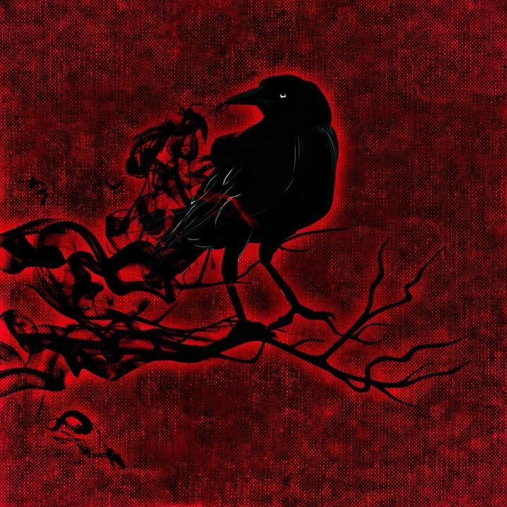 Free illustration: Raven, Crow, Night, Creepy - Free Image