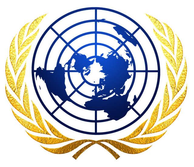 a solution to the flaws of the united nations The united nations presentation ideas in describe the two flaws this institution suffered from and explain how these ultimately led to its.