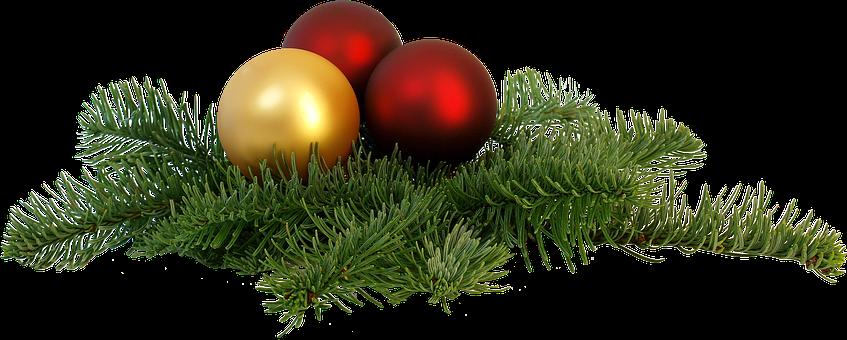 Freigestellt, Weihnachtszweig, Fest
