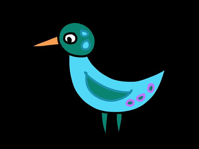 Darmo Ilustracja: Ptak, Turkus, Rysunek, Fantasy