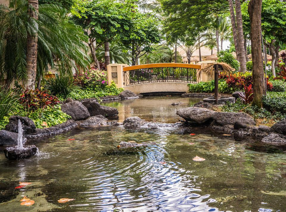 Free photo pond resort bridge koi pond free image on for Fish pond images