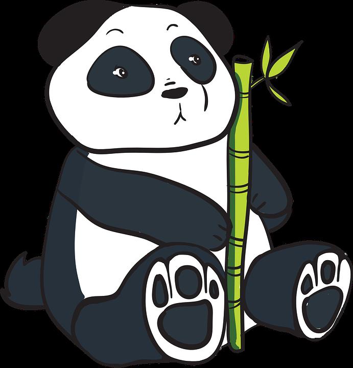 Panda China Oso Dibujos Gráficos Vectoriales Gratis En Pixabay