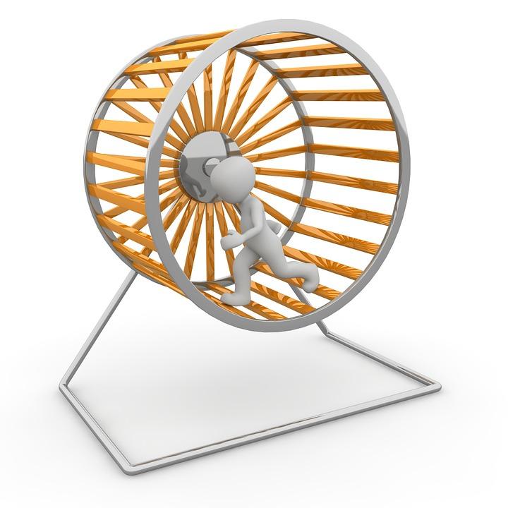 Hamster Wheel, Impeller, Job, District, Turn