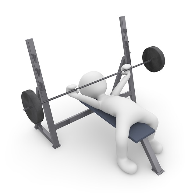 Bench Press Person: Sport Train Active · Free Image On Pixabay
