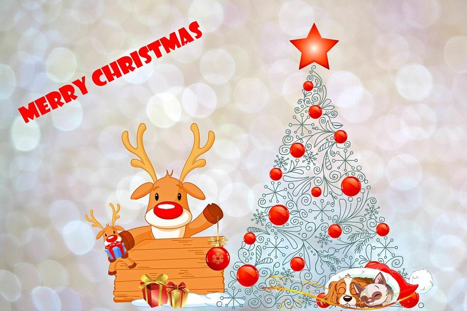 Cartoline Di Auguri Di Natale.Natale Cartolina Di Auguri Immagini Gratis Su Pixabay