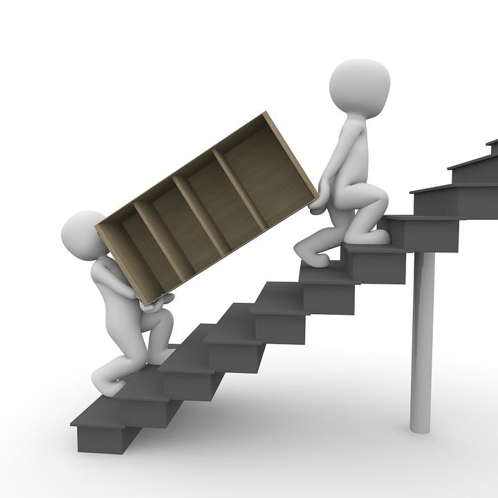 Déménagement, Ours, Cabinet, Escaliers, Haute