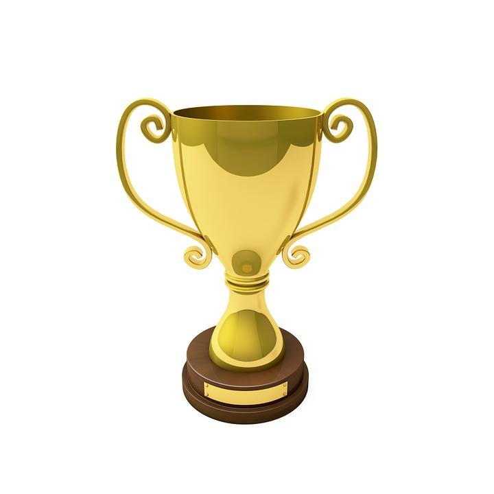 Cup Trophy Award Sport Profit Camp Championship