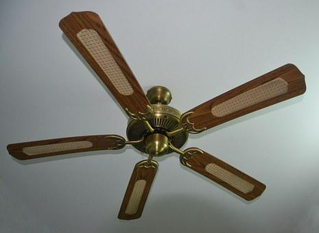Ceiling Fan, Fan, Whirling, Ceiling