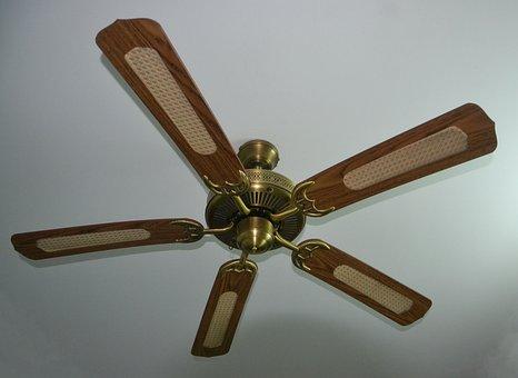 Ceiling Fan, Fan, Whirling, Ceiling