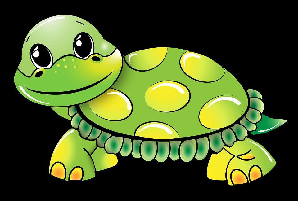 kostenlose vektorgrafik schildkr te lustig gr n kostenloses bild auf pixabay 1021521