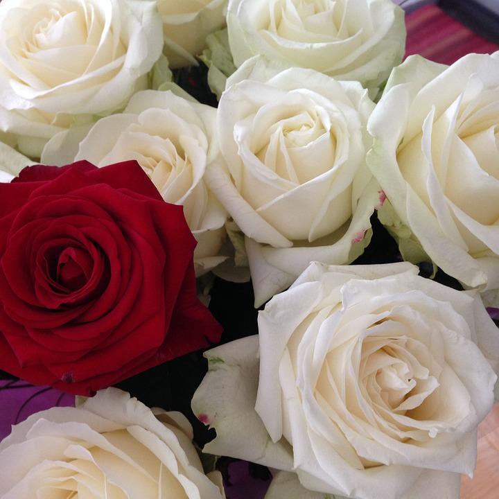 Bouquet Fleurs Flowers Photo Gratuite Sur Pixabay