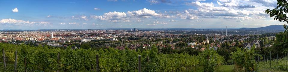 Wien, Panorama, Weinberg, Österreich, City, Fernblick