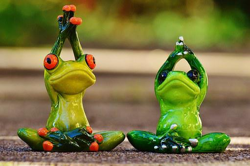 Frogs 1030283  340