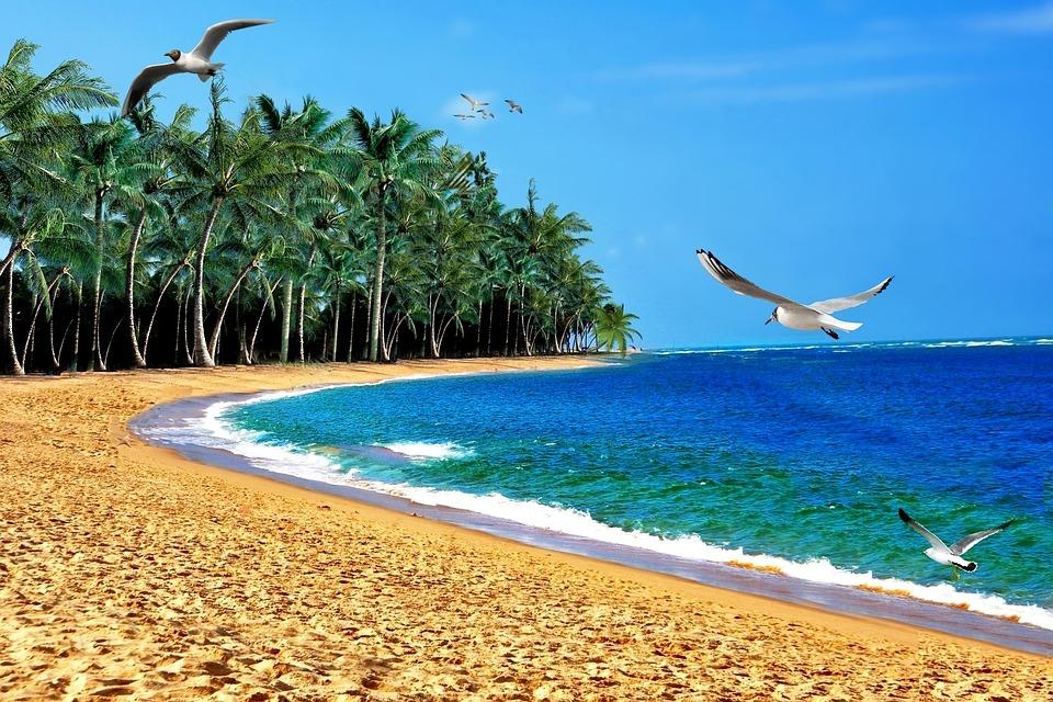 Beach, Sabbia, Mar, Oceano, Orla, Litoral
