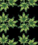cannabis, curative, cut out