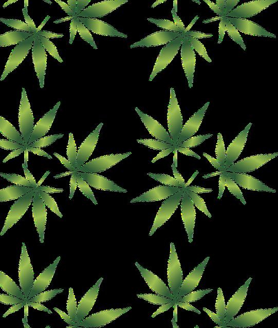 Weed blunt transparent background