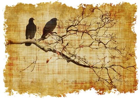 Parchment Birds Branch Branches Old S