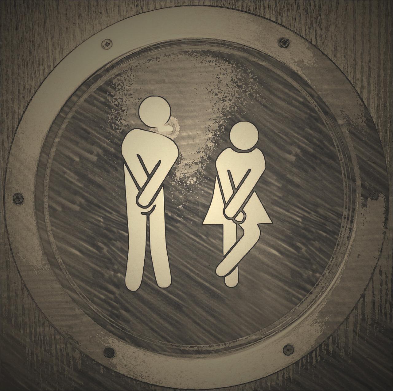 Toalett, Wc, Loo, Offentlig Toalett, Søt, Funny, Kvinne