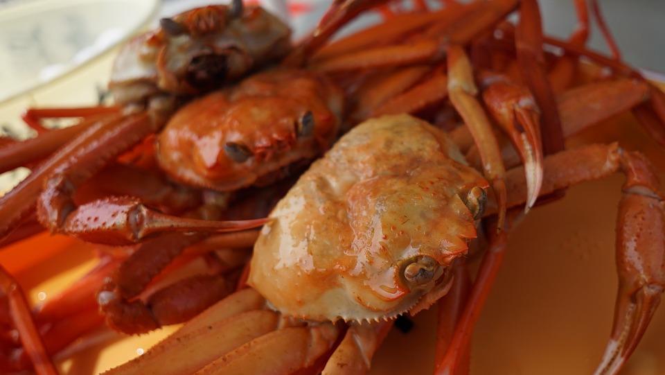かに, 蟹, ズワイガニ