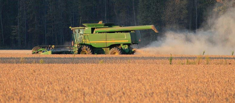 Harvest, Soybeans, Crop, Farming