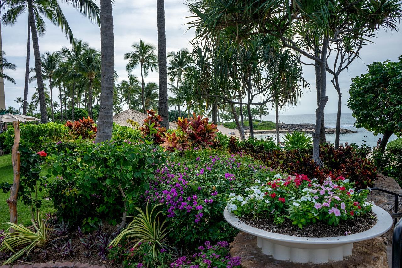 тропический сад гавайи фото шатенка фоткается траве