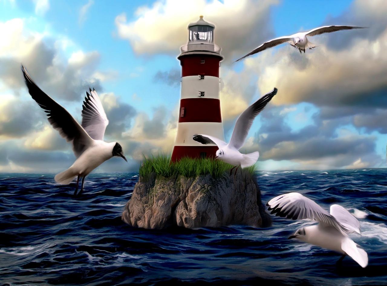 открытки с чайками осознанным