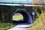 underpass, road, pedestrian