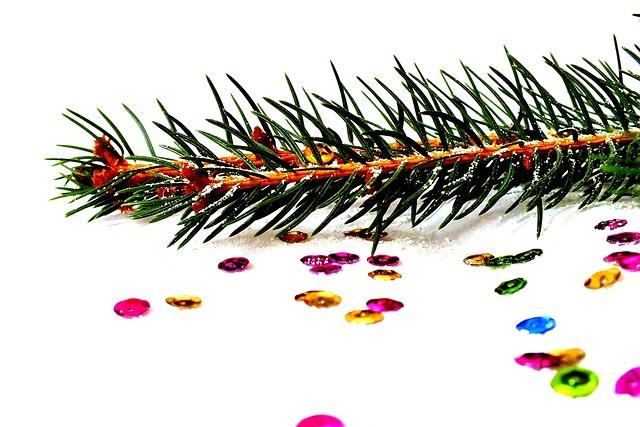 fichte fotos von weihnachten kostenloses foto auf pixabay. Black Bedroom Furniture Sets. Home Design Ideas