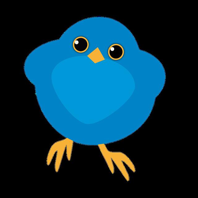 bluebird funny cute  u00b7 free image on pixabay funny eye clip art Googly Cartoon Eyes Clip Art