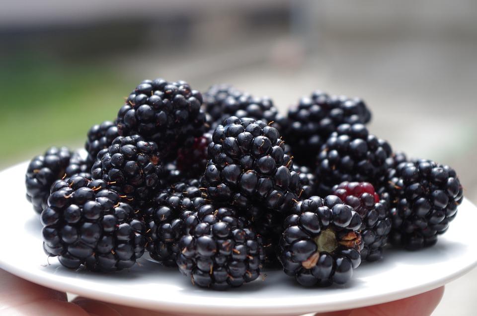 Blackberries, On A Plate, Black, Fruit, Meal, Fresh