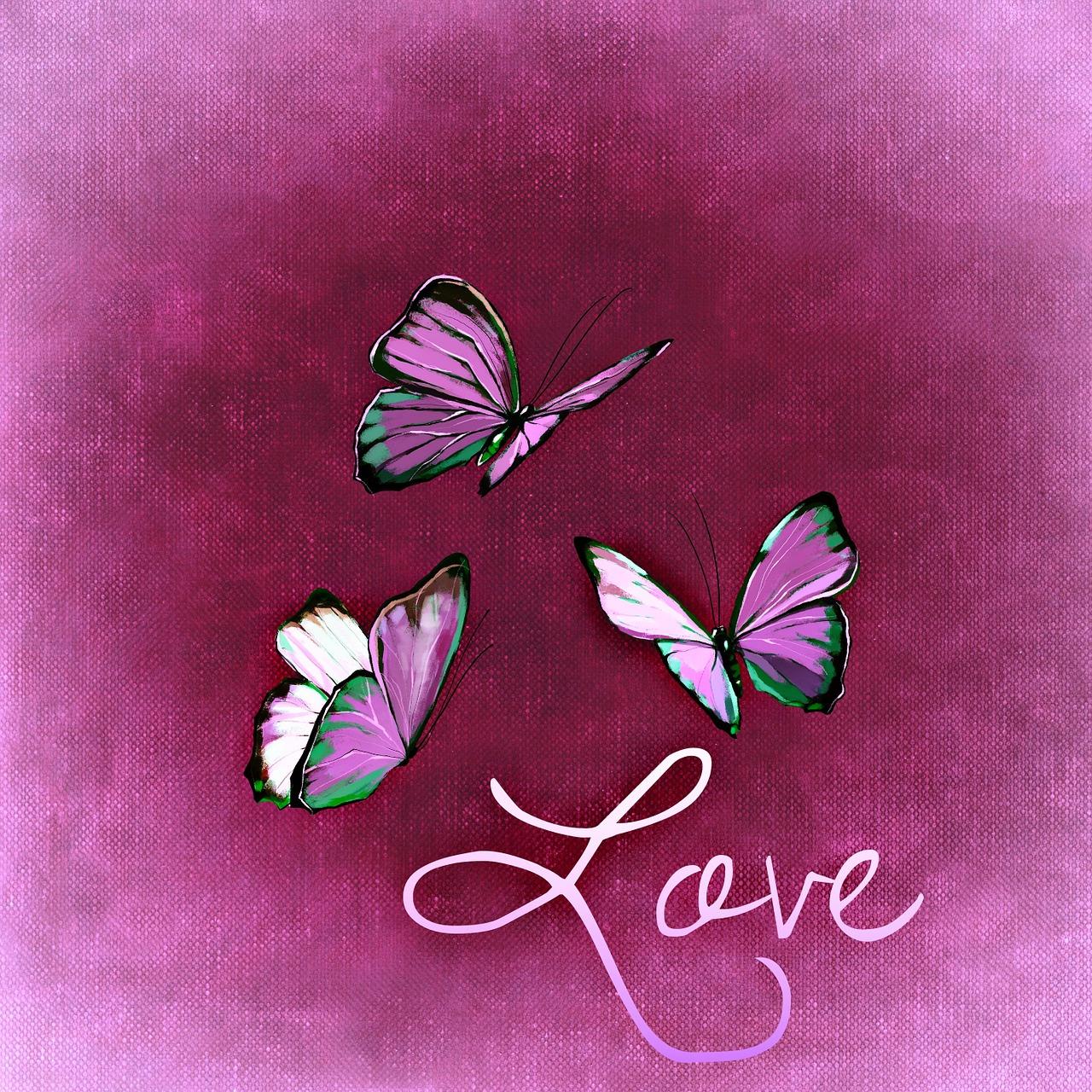 Картинки любовь как мотылек
