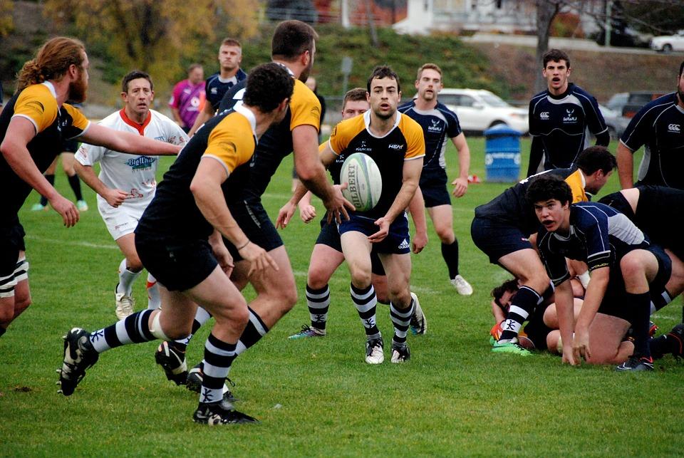 rugby sport game pixabay