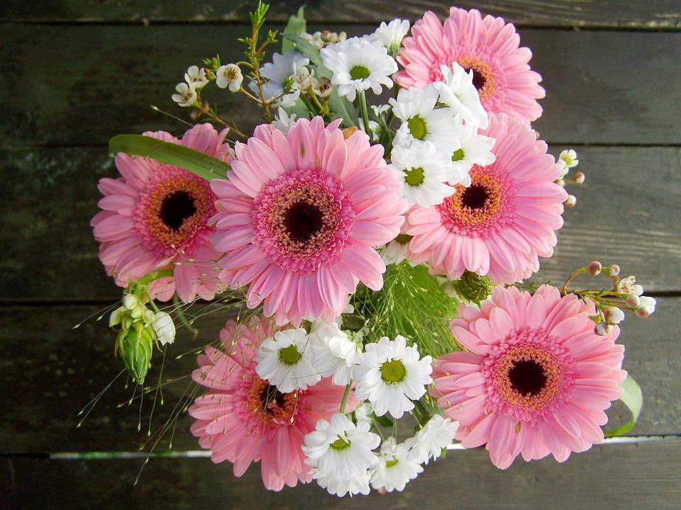 Bunch of flowers pink and white free photo on pixabay bunch of flowers pink and white flowers gerbera mightylinksfo