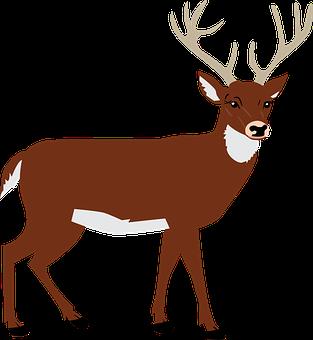 Jelen Vektorova Grafika Pixabay Stahnete Si Obrazky Zdarma