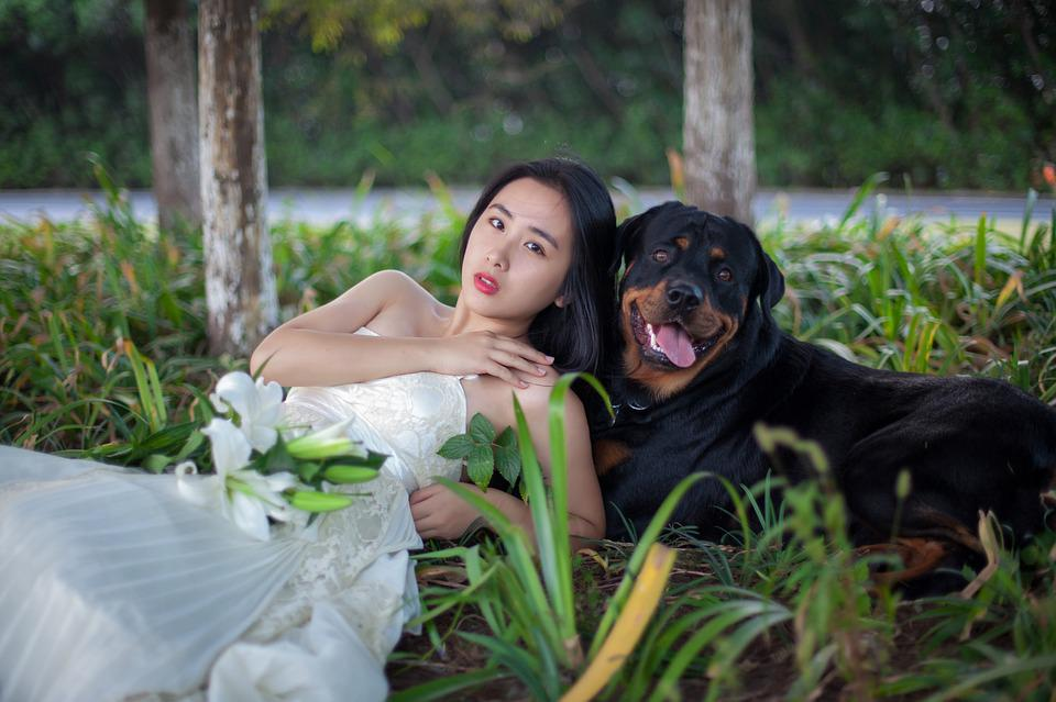 Pictures dogs mating humans Pictures, Images