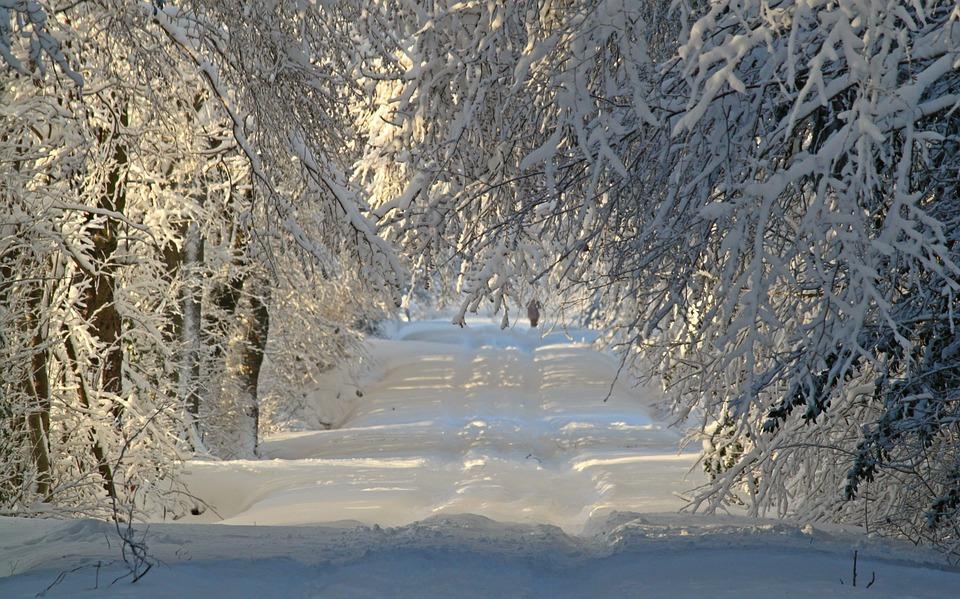kostenloses foto winter winterlandschaft schnee kostenloses bild auf pixabay 1060526. Black Bedroom Furniture Sets. Home Design Ideas