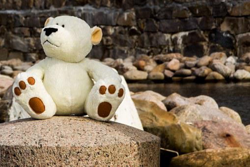bear-1060699__340.jpg