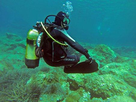 Scuba Diver, Scuba, Diver, Padi, Water