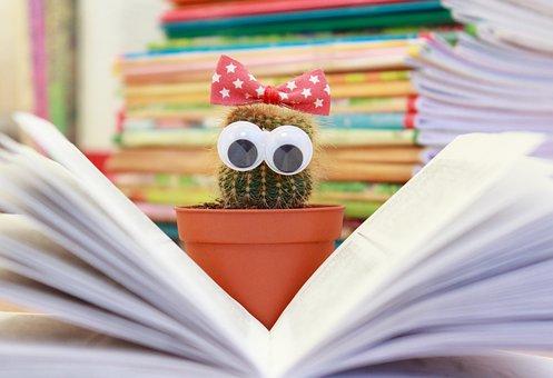 サボテン, 本, 花, ポット, 読む, 擦り傷がつきやすい, 知識, 文学