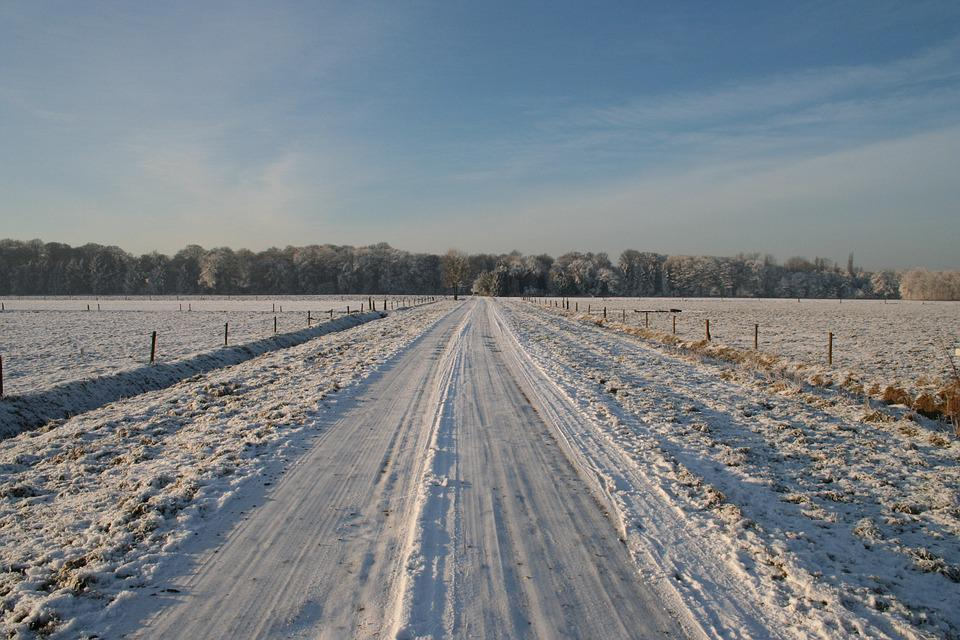 free photo frozen road winter winter trees free image