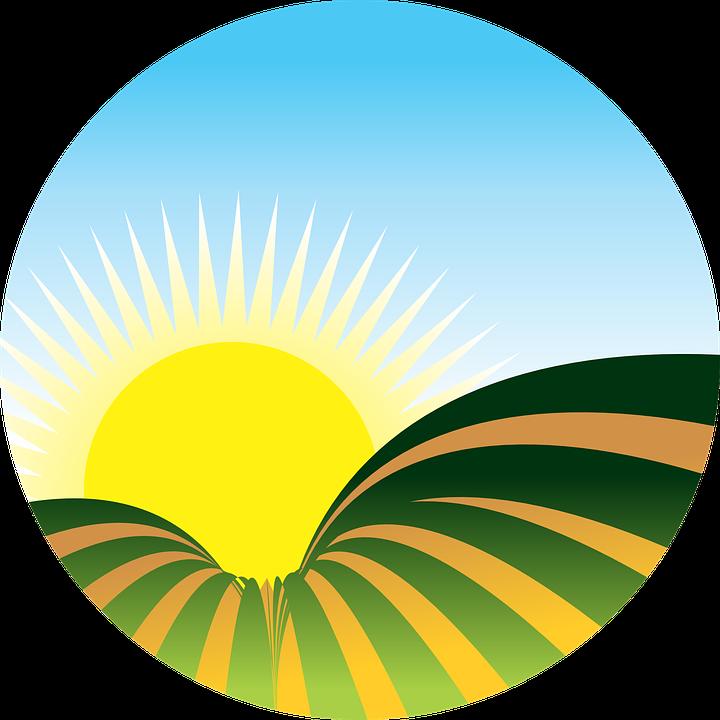 Free vector graphic sol farm plantation sunset free image on pixabay - Sol en verre transparent ...
