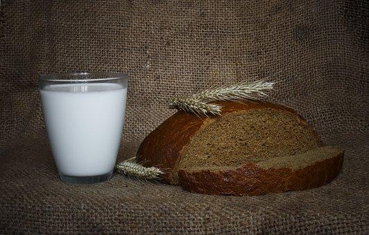 В Курской области запущен масштабный проект по объединению производителей хлеба и молока