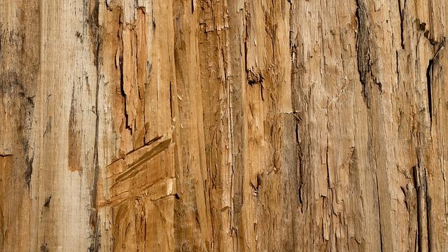 Textura De Fondo Madera 183 Foto Gratis En Pixabay