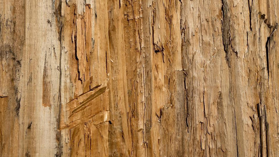 Texture Background Wood 183 Free Photo On Pixabay